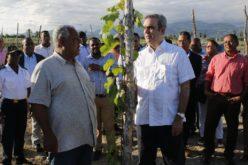 Luis Abinader quiere reajuste del presupuesto para aumentar ingresos ayuntamientos