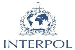 La Inerpol apresa en Las Terrenas (Samaná)  ciudadano belga acusado de matar a su padre