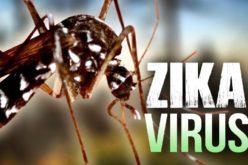 Un descubrimiento clave sobre el virus del Zika