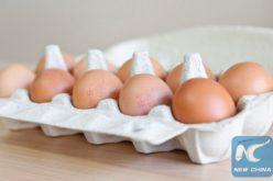 Distribuyen cientos de miles de huevos contaminados por insecticida nada más y nada menos que en el Reino Unido