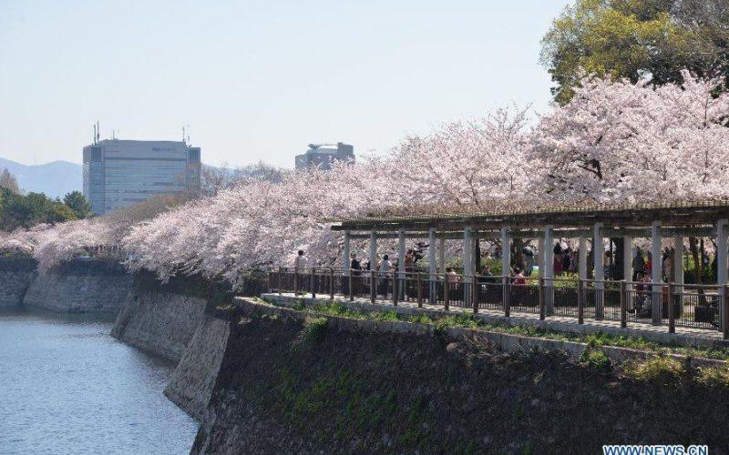 El G20 va a la ciudad de Osaka, Japón, el próximo año