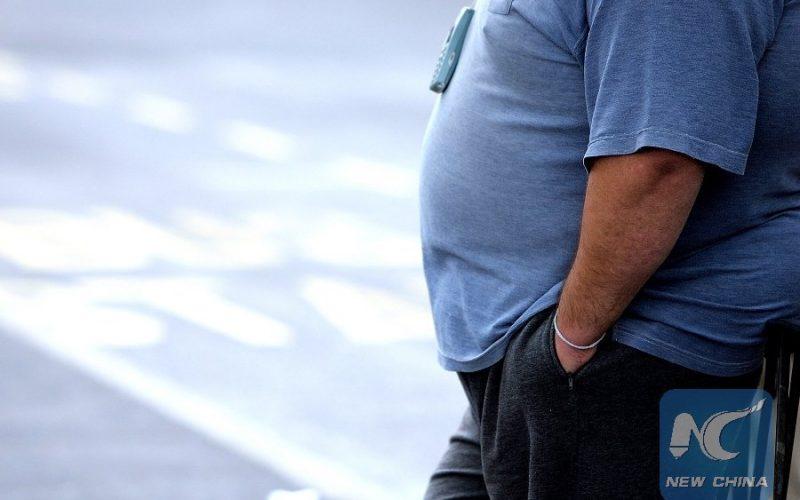 Científicos chinos descubren proteína que fluye del hígado y produce obesidad; la identifican en estudio con ratones