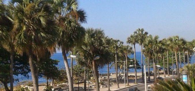 (Video) Las algas invaden litoral del mar Caribe que bordea el Malecón de la CapitalRD