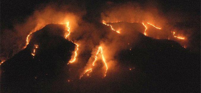Incendios en la Amazonia responden a una acción planificada, según fiscalía de Brasil