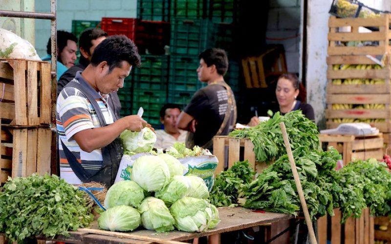 Ahora, 821 millones de personas pasan hambre en el planeta; en el 2050 pasarán 2 mil millones más, proyecta el Banco Mundial