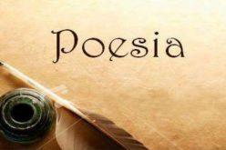 Viene el Primer Festival Nacional de Poesía Santo Domingo 2019