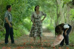 (Video) «Colours», entre las películas más nominadas a los premios La Silla