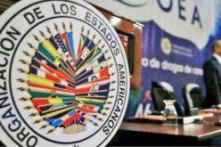Colapso elecciones municipales RD se debió a mal diseño de «software» y a mala gestión de área informática de la JCE, concluye la OEA en informe